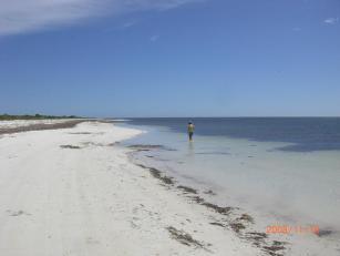 ほぼプライベートビーチ