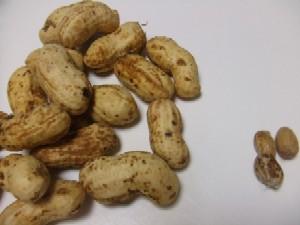 p-nuts.jpg