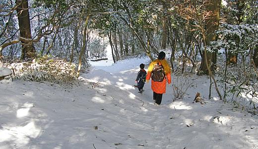 冬芽観察会-2