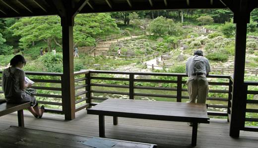 六甲高山植物園2009-1