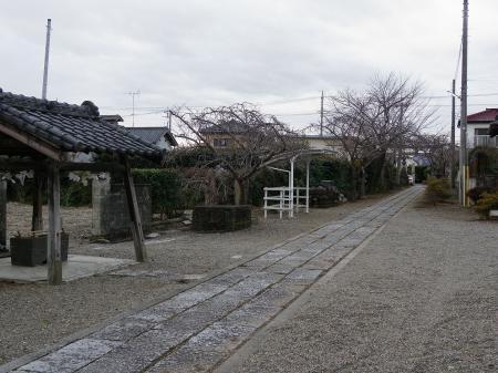 2011nekoya004.jpg