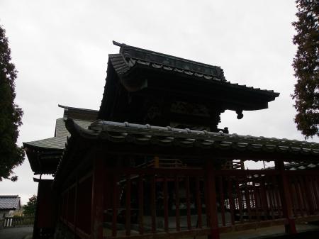 2011nekoya011.jpg