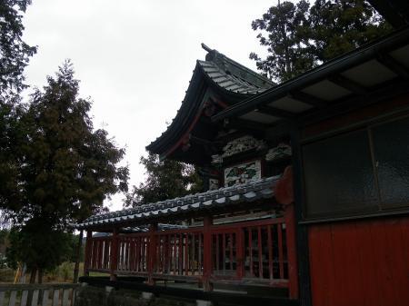 2011nekoya015.jpg