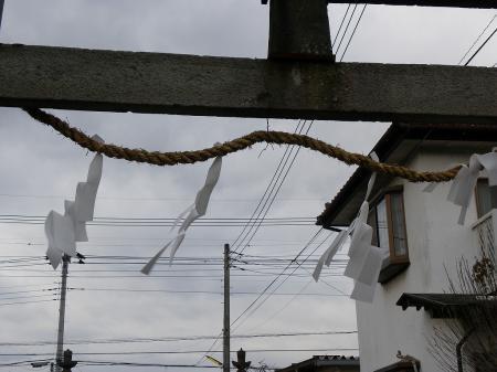 2011nekoya018.jpg