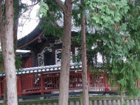 2011nekoya023.jpg