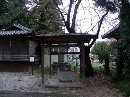 2011saka003.jpg