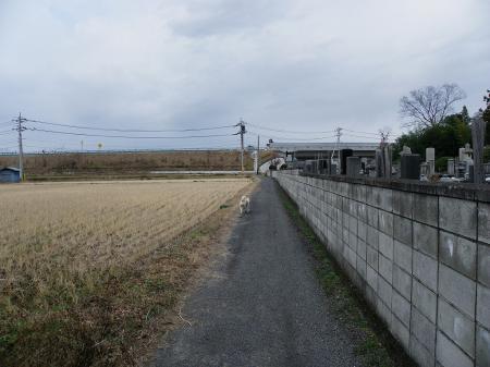 2011saka011.jpg
