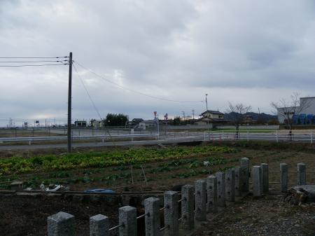 2011tenomi011.jpg