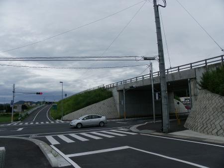 IMGP3576.jpg