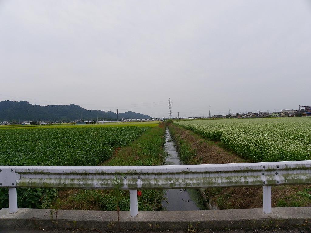 atagoka024.jpg
