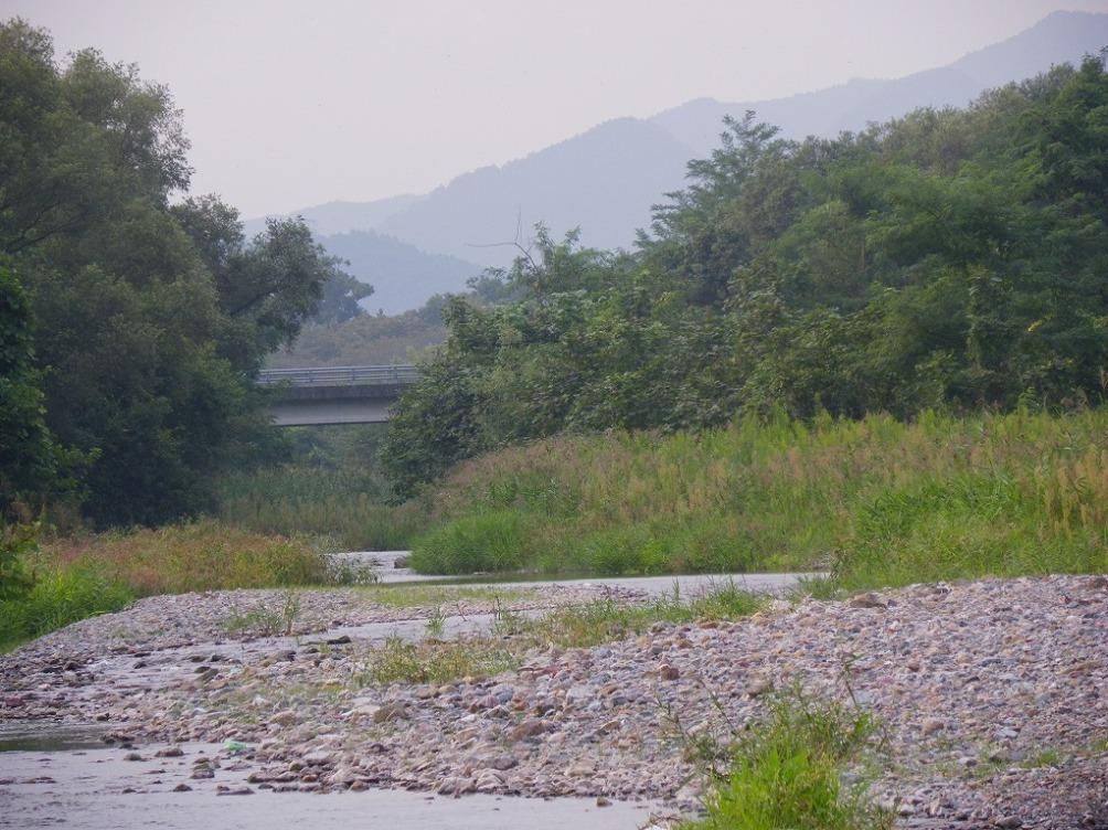 hatahiko033.jpg
