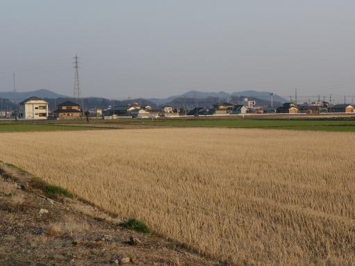 hiokomi008.jpg