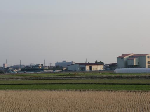hiokomi011.jpg