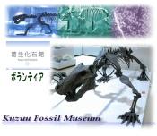 imagebo.jpg