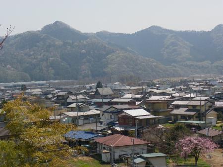 kamoharu015.jpg