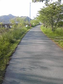 miyokawa009.jpg