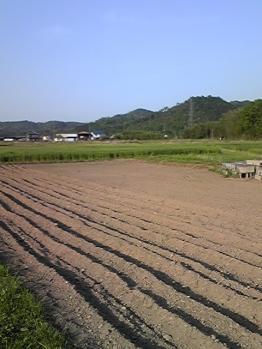miyokawa028.jpg