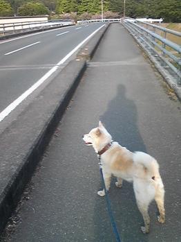 miyokawa041.jpg