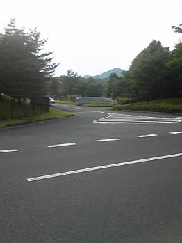 nisihata3022.jpg