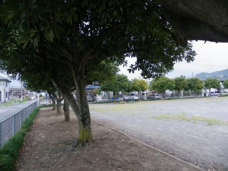 yosidaikouen004.jpg