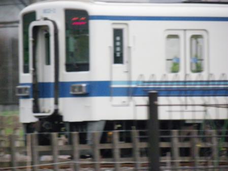 yosidaikouen016.jpg