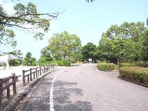 公園アプローチ