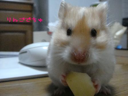りんごでちゅ