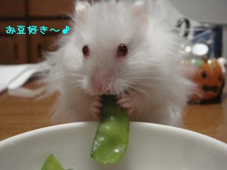 お豆好き~♪