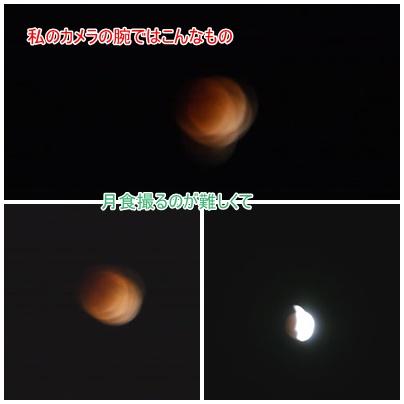 月食 12月10日夜