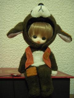 FELIX Brownie 038