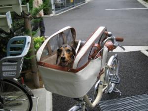 h-自転車