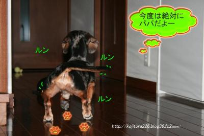 IMG_2242.jpg