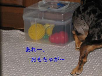 IMG_5612.jpg