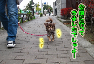 h-IMG_2085.jpg