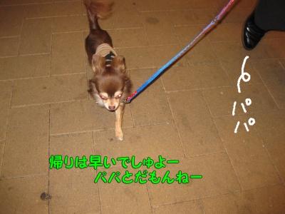 h-IMG_2211.jpg
