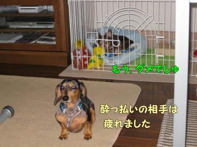 h-IMG_2295.jpg