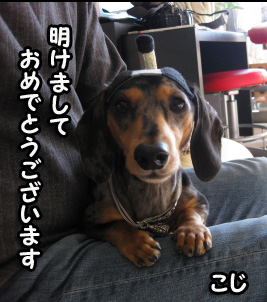 h-IMG_2505-1.jpg
