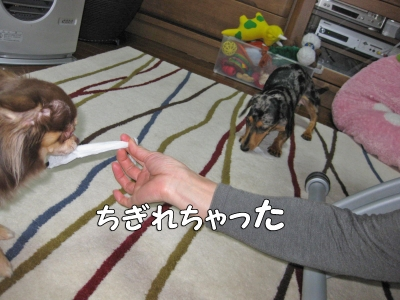 h-IMG_2703-1.jpg