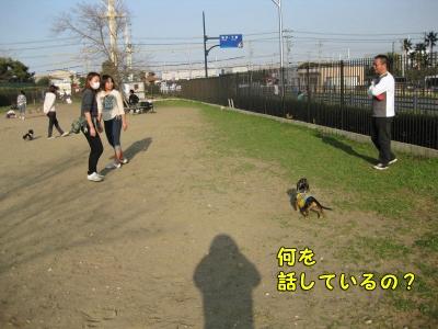 h-IMG_2923-1.jpg