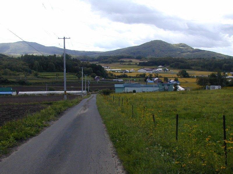 P1010072田んぼと牧草