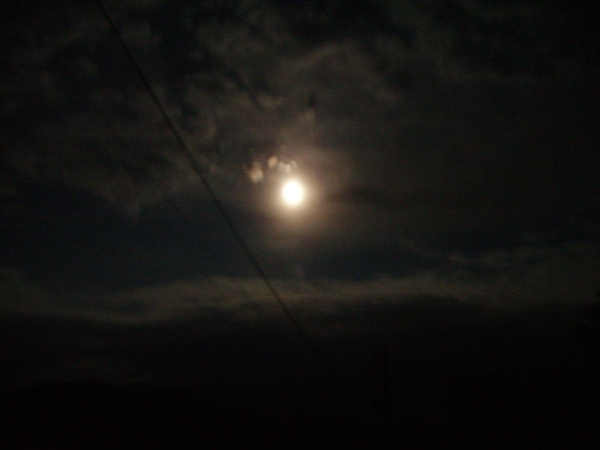 PICT4292お月さん