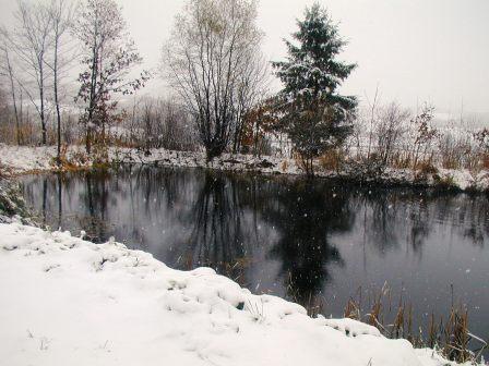 P1010034雪景色池