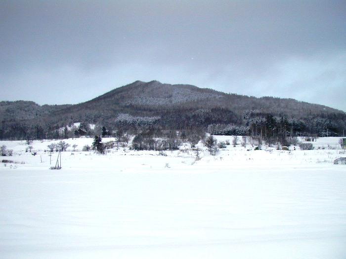 1月21日、曇り雪