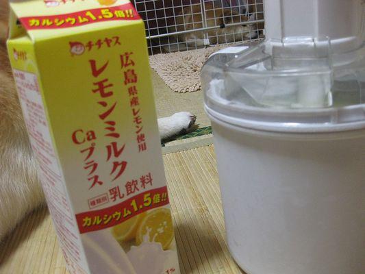 アイス作りま~す