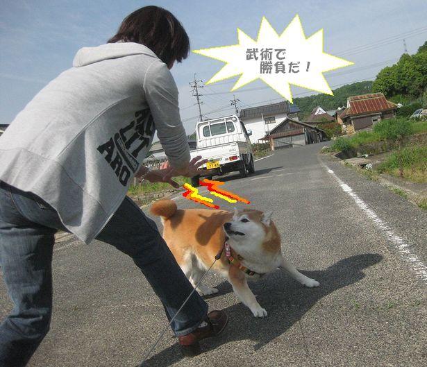 かぁめ~は~めぇ~~波~!!