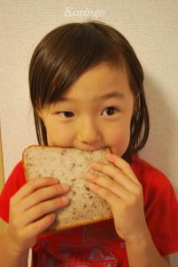 2009年6月18日あん食パンいただきます
