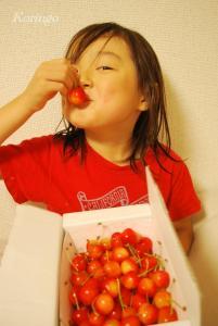 2009年6月24日さくらんぼ