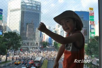 2009年7月30日渋谷交差点2