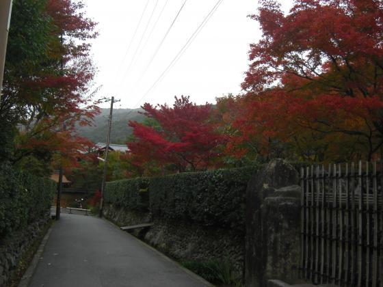 2010-11-13+002_convert_20101115202333.jpg