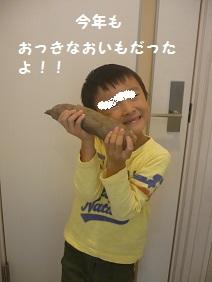 001_20101031080752.jpg
